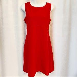 No Boundaries Red Stretch Dress
